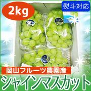 【限定特価】 岡山フルーツ農園産・シャインマスカット 2kg 【送料込】